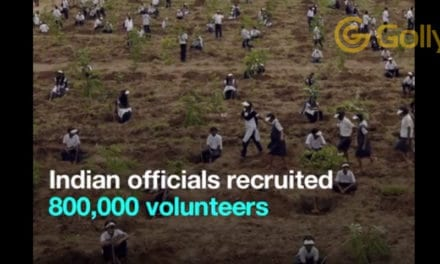 How Did India Plant 50 Million Trees In One Day